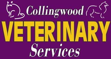 Collingwood Veterinary Services